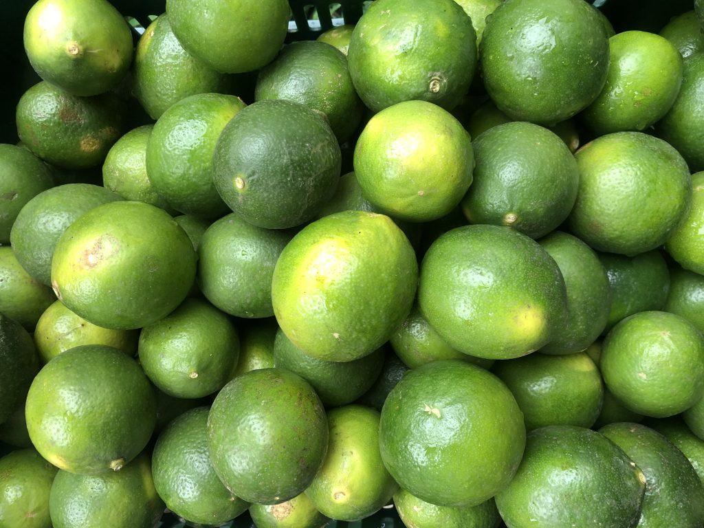 citron meyer
