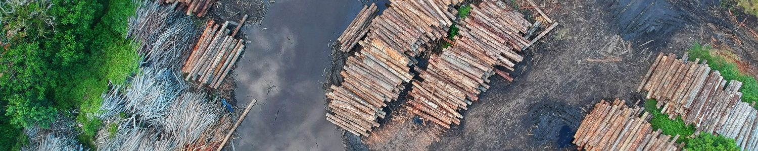 bird-s-eye-view-deforestation-high-1268076